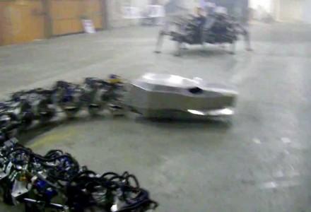 Die Titanoboa trifft auf die Roboter-Spinne