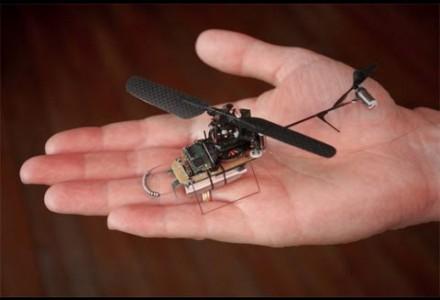 Drohnen mit koordinativen Fähigkeiten