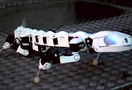 Musterbeispiele bionischer Roboter