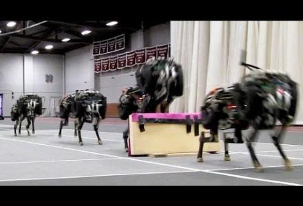Das MIT macht mit Cheetah einen weiteren Entwicklungssprung