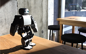 Roboter PLEN