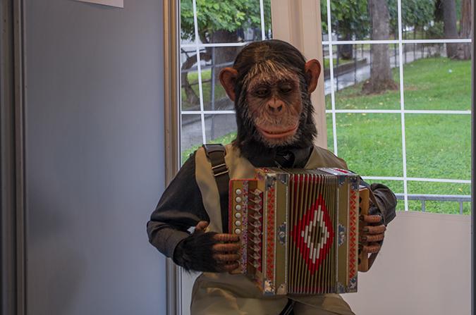 Kuriositätenkabinett II: Musizierender Affe.